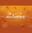 autumn sale background layout decorate with leaves vector image vector image