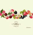 berry seamless border vector image vector image