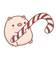 cute hand drawn cartoon piggy vector image vector image