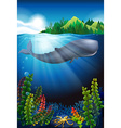 Whale swimming under the ocean vector image vector image