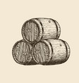 wine cellar winery wooden barrels with vector image