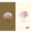 Brain logo design template brain as a book with vector image