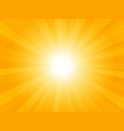 beautiful yellow background with rays vector image vector image