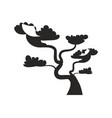 big bonsai tree with curved trunk black silhouette vector image