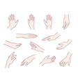 hand collection vector image vector image