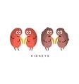 Healthy vs Unhealthy Kidneys Infographic vector image vector image
