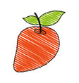 juicy fresh fruit cartoon vector image