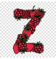 Letter Z made from red berries sketch for your vector image vector image