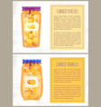 canned oranges and peaches slices banners set vector image