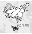 Hand drawn whole and sliced eggplants vector image