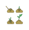 How to put plant Stages of growth vector image