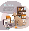 pets accessories in the pet store with dog vector image