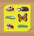 six types of insects on yellow paper vector image