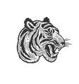 tiger head tattoo sketch vector image vector image