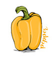 yellow bell pepper sketch vector image