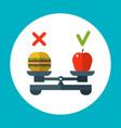 diet food balance healthy concept vector image vector image