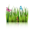Flying butterflies by the grass vector image vector image