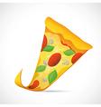 Pizza slice cartoon vector image vector image