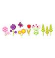 spring garden cute bright flowers meadow plants vector image vector image