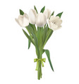 white tulips bouquet vector image vector image