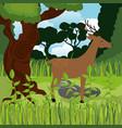 wild reindeer in the jungle scene vector image vector image