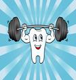 Cartoon Tooth Character Lifting Weights vector image