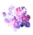 bright primula violet and pink watercolor texture vector image