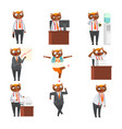 businessman cat in formal clothes in different vector image vector image
