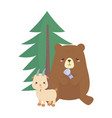 camping cute bear and goat with lantern foliage vector image