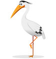 cartoon heron bird vector image vector image
