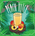 fresh peach juice in glass with ripe fruits vector image