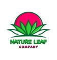 natural leaf logo design template vector image vector image