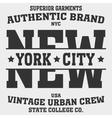 New York Sport vector image vector image
