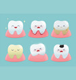 set cute little teeth vector image