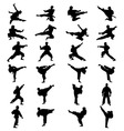 silhouettes of karate vector image vector image