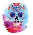 skull color t-shirt graphics vector image