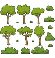 trees and bushes set vector image