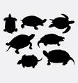 Turtle tortoise amphibian rare animal silhouette vector image vector image