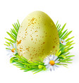 yellow egg with spots on grass vector image vector image