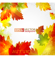 autumn2 vs vector image vector image