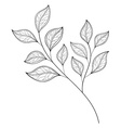 Beautiful Monochrome Contour Leaf vector image vector image