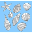 Black white sea shells for coloring book on blue vector image