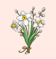 hand drawn narcissus and willow branches bouqet vector image vector image