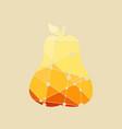 pear multicolor vector image vector image