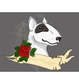 pitbull with tattoo styled ribbon and rose vector image