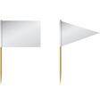 Toothpick Flags vector image vector image