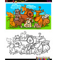 cats and dogs characters group coloring book vector image vector image