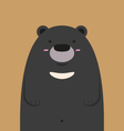 Cute big asian black bear