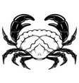 hand drawn crab in realistic style isolated vector image vector image