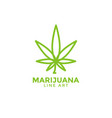 marijuana leaf graphic design template vector image vector image